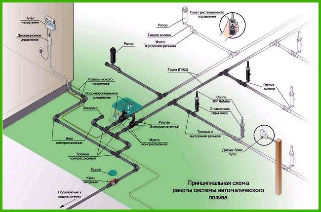 Автоматический полив огорода своими руками: система для дачи и ...