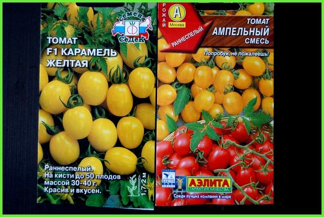 Урожайные сорта томатов для теплиц, Лучшие томаты для теплицы.
