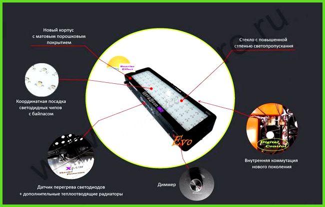 (ширина-глубина-высота-высота светодиодные лампы для теплицы зимой экзамена географии ФИПИ