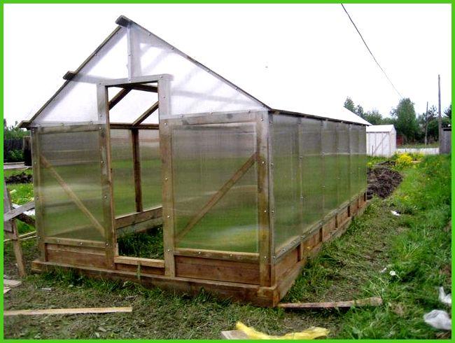 как построить теплицу для цитрусовых растений