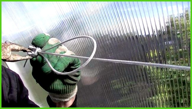 теплицы системы подвязок