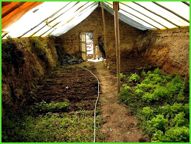 Build a $300 underground greenhouse for year-round gardening (Video ...