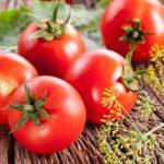 Изменение температуры воздуха как способ повышения урожая томатов